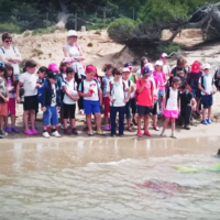 Actividades para colegios Tarragona