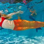 Mermaid tail mako